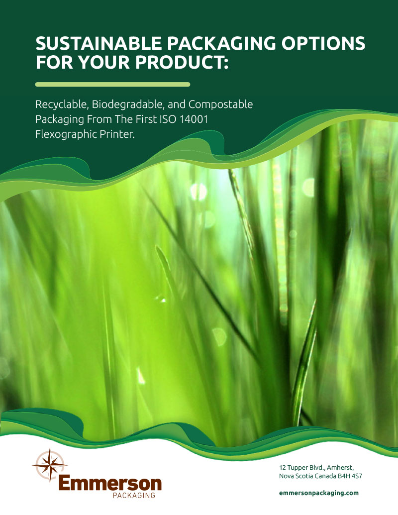 Sustainable Packaging Options For Your Product
