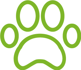 Pet food icon